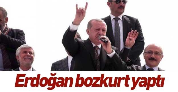 Erdoğan bozkurt işareti yaptı