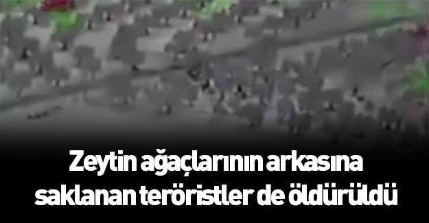 Zeytin ağaçlarının arkasına saklanan teröristler öldürüldü