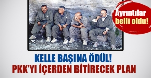 İşte PKK'yı içerden biterecek planın ayrıntıları..