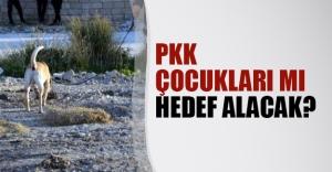 PKK hain saldırı için öğrencileri mi hedef seçiyor?