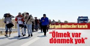 Suriyeli mülteciler geri dönmeme konusunda kararlı!
