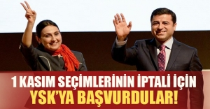 1 Kasım seçimleri iptal mi ediliyor? HDP'den flaş başvuru