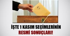İşte 1 Kasım erken seçimin resmi sonuçları!