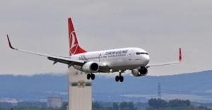 Atatürk Havalimanı'nda köpek kazası! Uçuşlar aksadı!