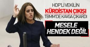 HDP'li vekil'in 'Kürdistan' sözü Meclis'te tansiyonu yükseltti