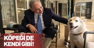 İsrail Başbakanı Netanyahu'nun köpeği milletvekilini ısırdı!