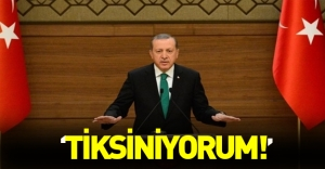"""Cumhurbaşkanı Erdoğan: """"Tiksiniyorum"""""""