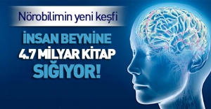 İnsan beyni 4,7 milyar kitabı depolayabilir