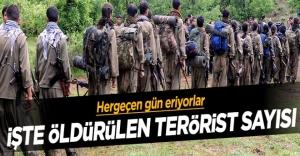 Genelkurmay açıkladı! İşte öldürülen terörist sayısı!