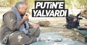 Karayılan Putin'e yalvardı!