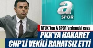 PKK edilen küfür CHP'nin ağrına...