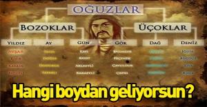 Türklerin soy ağacının il il listesi!...