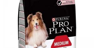 En Çok Satılan Proplan Köpek Maması Çeşitleri